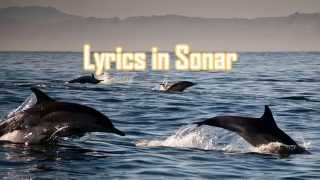 Royalty FreeBackground:Lyrics in Sonar