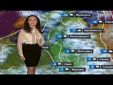 погода прогноз клева тамбов