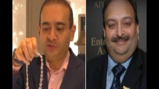 In Graphics: Passport of nirav modi and mehul choksey suspended by foreign ministry - ABPNEWSTV