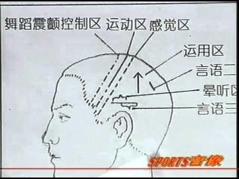 頭部按摩:常用穴位,基本按摩手法,推法,拿法,磨法,叩法