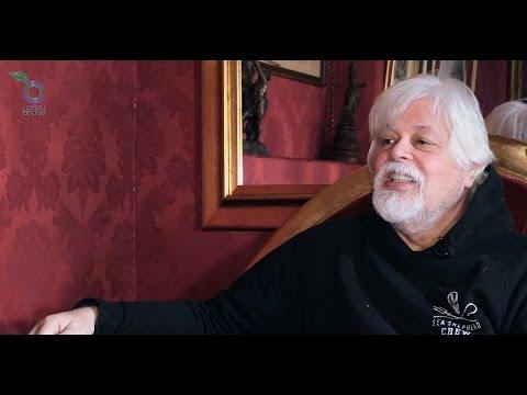 Paul Watson (Sea Shepherd), le dernier pirate.
