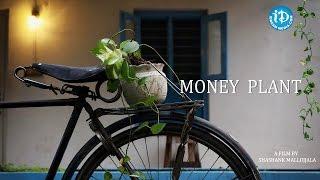 Money Plant || Latest Telugu Short Film || Directed by Shashank Mallojjala - IDREAMMOVIES