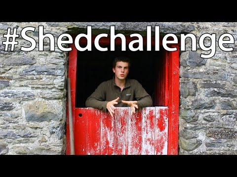 #shedchallenge - What's in our Shed?