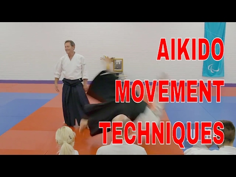 AIKIDO Movement Techniques Christian Tissier pt10