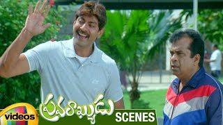 Jagapathi Babu Flirts with Brahmanandam's Wife | Pravarakyudu Movie Scenes | Priyamani | Sunil - MANGOVIDEOS