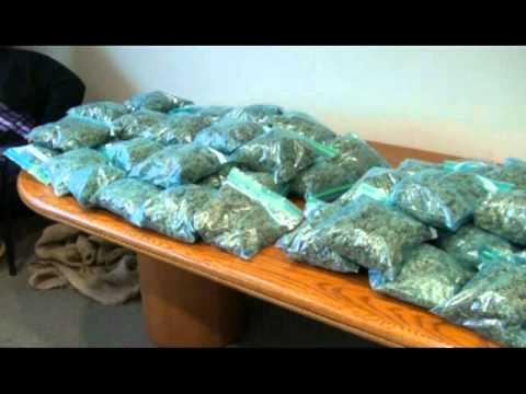 C-K Police Make 3 Drug Busts in 24 Hours