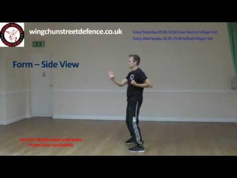 Siu Nim Tao (Sil Lim Tao) Wing Chun's First Form