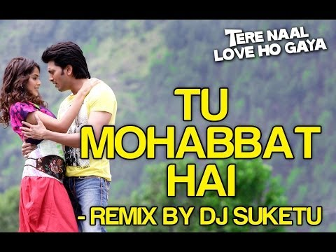 Tu Mohabbat Hai Remix - Feat Atif Aslam Full Song - Tere Naal Love Ho Gaya