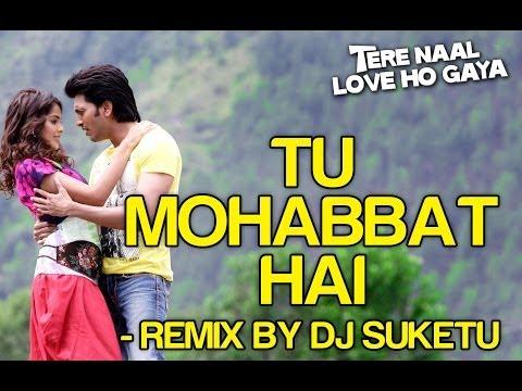 Tu Mohabbat Hai Remix - Feat Atif Aslam Full Song - Tere Naal Love Ho Gaya