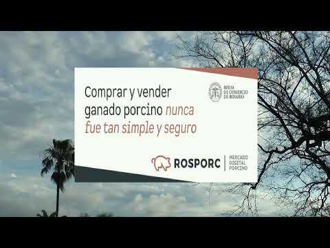 Mirá en vivo CyD Noticias 1ra. Edición
