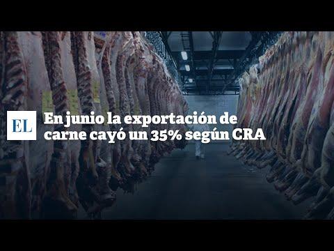 EN JUNIO LA EXPORTACIÓN DE CARNE CAYÓ UN 35% SEGÚN CRA
