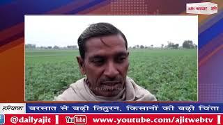 video : बरसात से बढ़ी ठिठुरन, सब्जी उत्पादक किसानों की बढ़ी चिंता