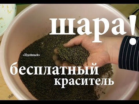 ютуб прикормка для плотвы своими руками весной