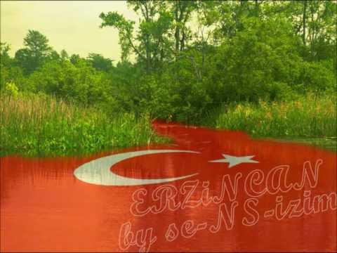 Aysun Gültekin - Kırmızı Gül Demet Demet by se-NS-izim