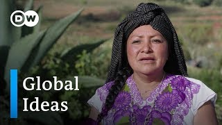 Mexico: Sustainable tourism | Global Ideas - DEUTSCHEWELLEENGLISH