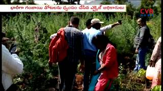 Excise department Officers Destroyed Ganja Gardens in East Godavari | Ramavaram Mandal | CVR NEWS - CVRNEWSOFFICIAL
