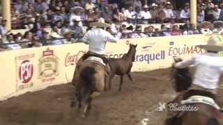 Charrería en Tlajomulco de Zúñiga (Tlajomulco de Zúñiga, Jalisco)