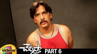 Chourasta Telugu Full Movie HD | Raja | Shruti | Soumya | Ashish Vidyarthi | Part 6 | Mango Videos - MANGOVIDEOS