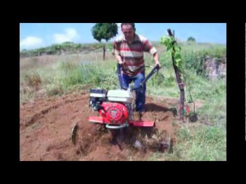 Benassi BL105 Honda Çapa Makinesi
