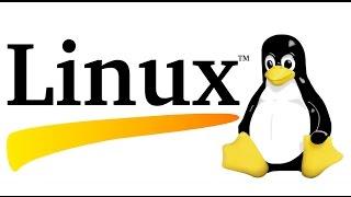 10 команд для начинающего линуксоида #1
