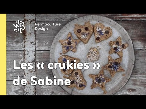 Rubrique Permaculture Humaine, recette : des cookies crus gourmands, sains et équilibrés