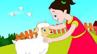 Mary had a little lamb, nursery rhymes with lyrics