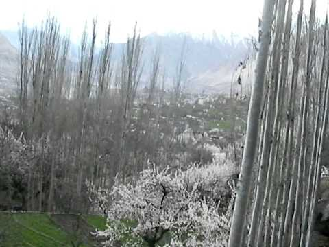Spring in Hunza Karimabad April 13, 2014 II