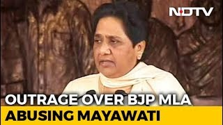 BJP Leader's Comment On Mayawati Creates Storm, Police Complaint Filed - NDTV