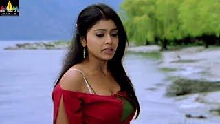 Shriya Scenes Back to Back | Naa Alludu Telugu Movie Scenes | Sri Balaji Video - SRIBALAJIMOVIES