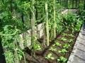 Smego maakt prachtige smeedijzeren tuinserre