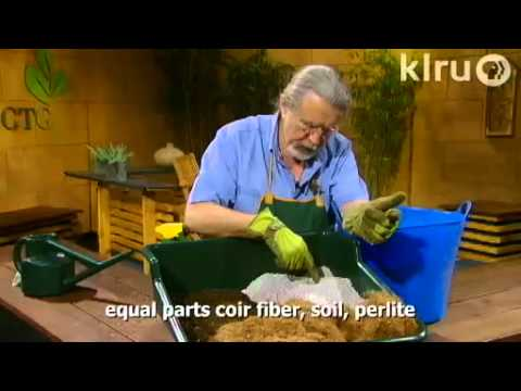 Homemade potting soil|John Dromgoole|Central Texas Gardener