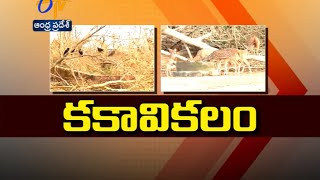 Cyclone Effect :The Expansive Premises Of Zoo Park In Vizag Have  Lost All Its Green Cover - ETV2INDIA