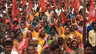 Mumbai: Tribals protest over claims on 'Jal, Jungle & Jamin' - TIMESOFINDIACHANNEL