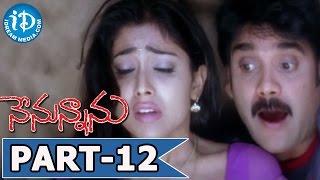 Nenunnanu Full Movie Part 12 || Nagarjuna, Aarti, Shriya || V N Aditya || MM Keeravani - IDREAMMOVIES
