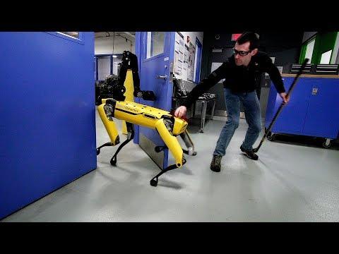 Тестирање робота