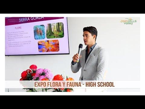 Expo Flora y Fauna: High School
