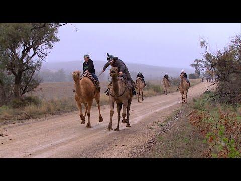 Camel Racing   Remembering Roner