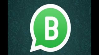 In Graphics: WhatsApp Business officially launched, know everything about this App - ABPNEWSTV