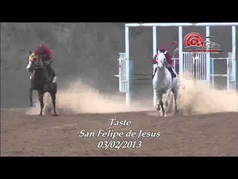 Carreras de Caballos en San Felipe de Jesus.