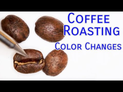 Coffee Roasting Basics Color Changes