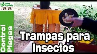 Trampas para control de plagas en huertos caseros