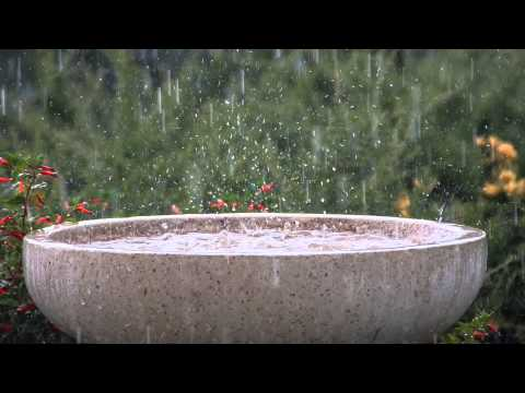 6 Hours Soothing Rain Storm + Schumann's Resonance Binaural Beat