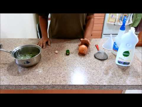 How To Make Homemade Pesticide for your Vegetable Garden [video]