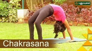 Yoga poses, Chakrasana | VallamaiKol | Good Morning Tamizha | 20/11/2016 | PuthuYugam TV Show