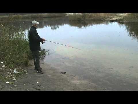 видео ловля на твичинг