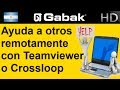 como pedir ayuda tecnica a traves de internet ( con teamviewer o crossloop) - by Gabak Tech