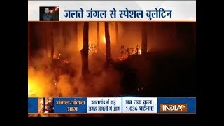 Special Report: Forest fire incidents create panic in Uttarakhand - INDIATV