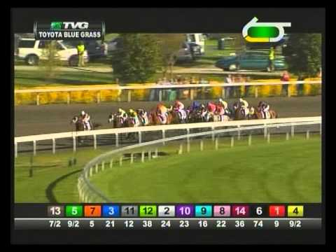 2013 Blue Grass Stakes - Java's War