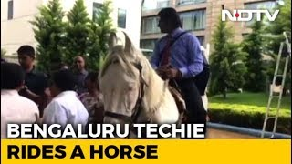 Bengaluru Techie Rides Horse To Work On Last Day To Protest Traffic - NDTV