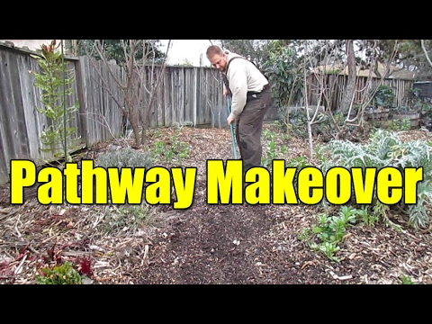 Greening Up The Pathways In The Garden | Living Mulch